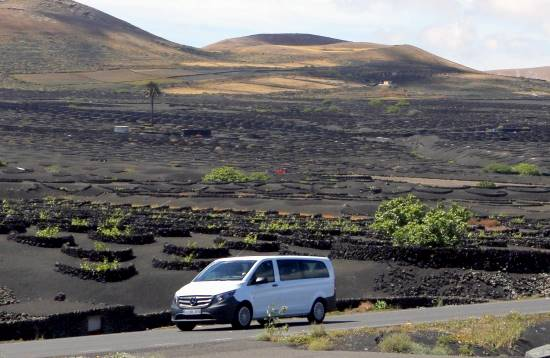 Minibus Tour Die Aromen von Lanzarote